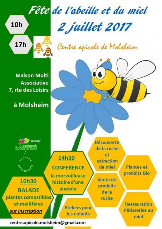 2017 06 30 fete de l abeille a molsheim