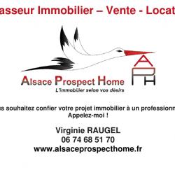 Alsace Prospect Home à Duttlenheim